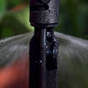 Picture of Micro Spray Pot Stake
