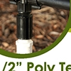 Picture of 1/2-in PVC MPT Tee to 1/2-in Poly Tubing w/ 1/2-in FPT Coupler (Qty 1)