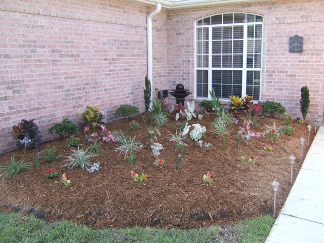 Mister Landscaper Drip Irrigation And Micro Spray